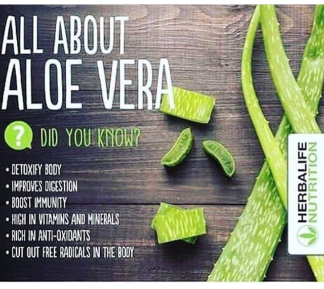herbal-aloe-concentrate
